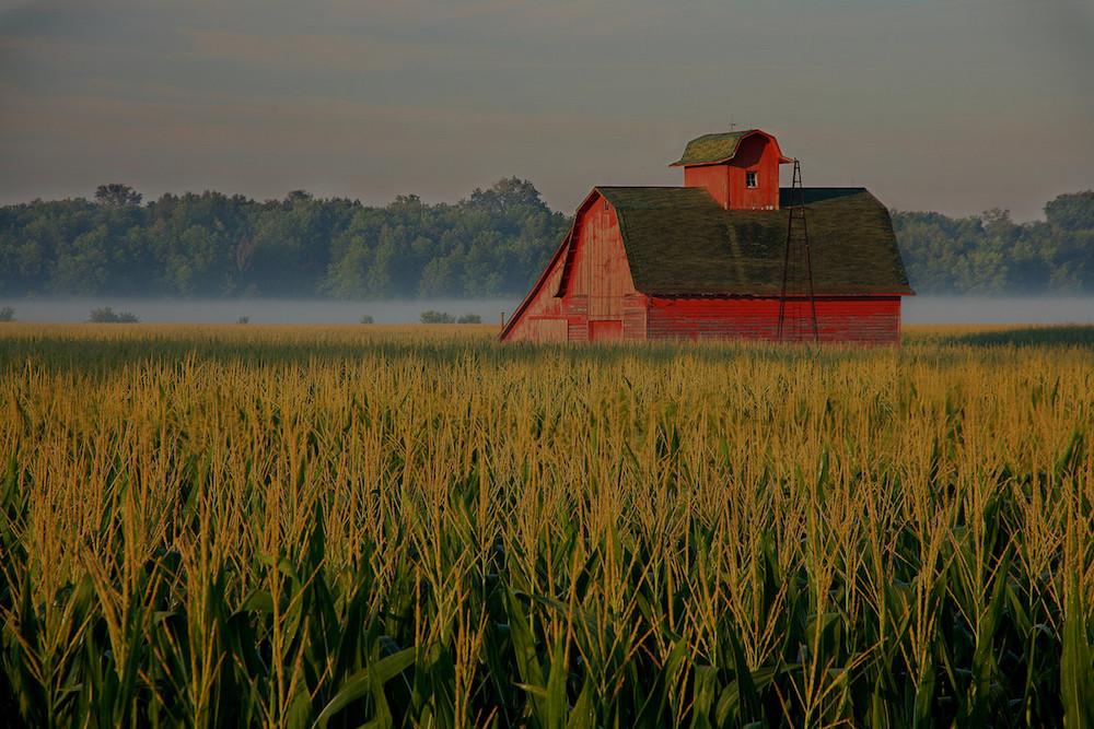 farm and crop insurance Kirkland WA
