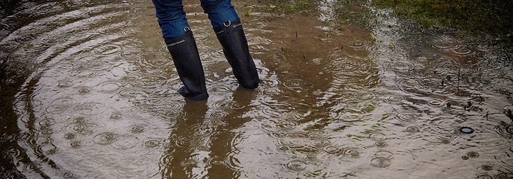 flood insurance Kirkland WA